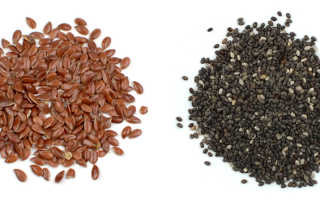 Что полезнее семя льна или льняное семя