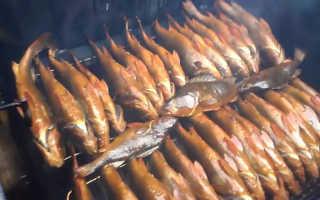 Чем полезна рыба копченая