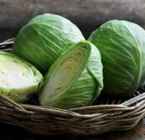 Пища полезная для поджелудочной железы