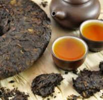 Чай пуэр черный полезные свойства