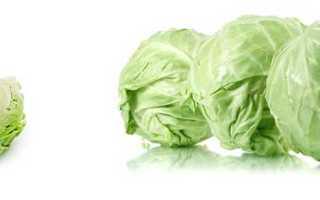 Польза от капусты белокочанной