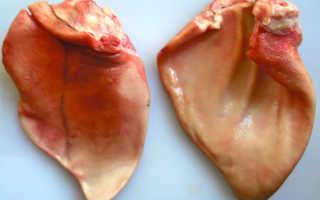 Полезны ли уши свиные