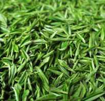 Какой полезный чай зеленый или черный