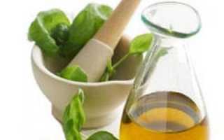 Масло орегано полезные свойства и противопоказания