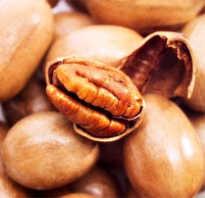 Что полезнее грецкий орех или пекан
