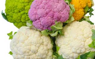 Чем полезна цветная капуста для организма человека