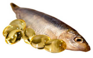 Рыбный жир польза и вред