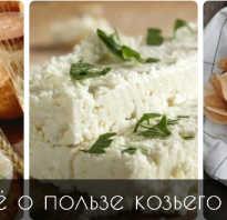 Козий сыр полезные свойства