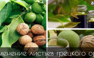 Листья грецкого ореха полезные свойства