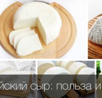 Чем полезен адыгейский сыр для организма