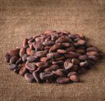 Чем полезен какао для женщин