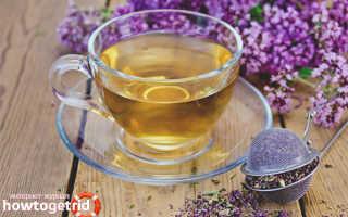 Чем полезна душица для женщин в чае