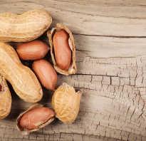 Полезные свойства арахиса для женщин