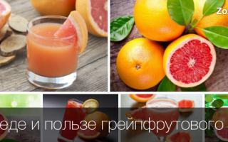 Сок грейпфрута чем полезен