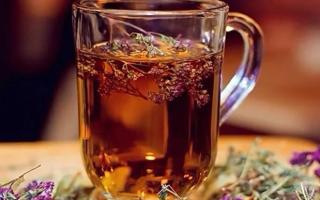 Полезные свойства чабреца в чае