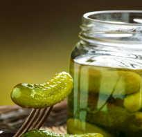 Что полезного в огурцах соленых