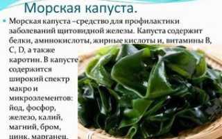 Полезные свойства морской капусты для организма