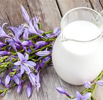 Полезные свойства молока коровьего