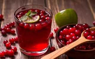Чай брусника полезные свойства