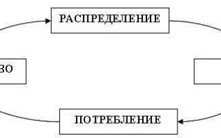 Процесс создания полезного продукта
