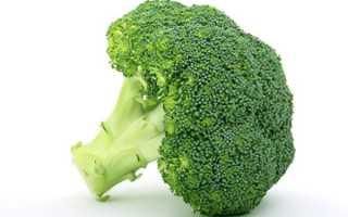 Полезные свойства брокколи капусты