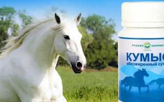 Чем полезен кумыс лошадиный