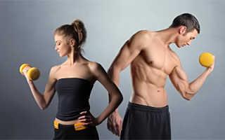Продукты полезные для мышц