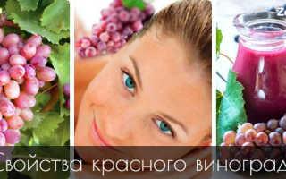 Полезные свойства винограда красного